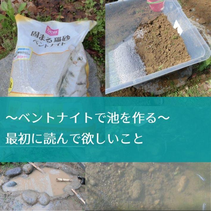 自宅に庭池を設置する方法|ベントナイト(猫砂)は正解か?