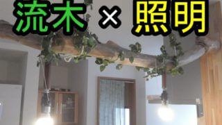 流木と照明の組み合わせ