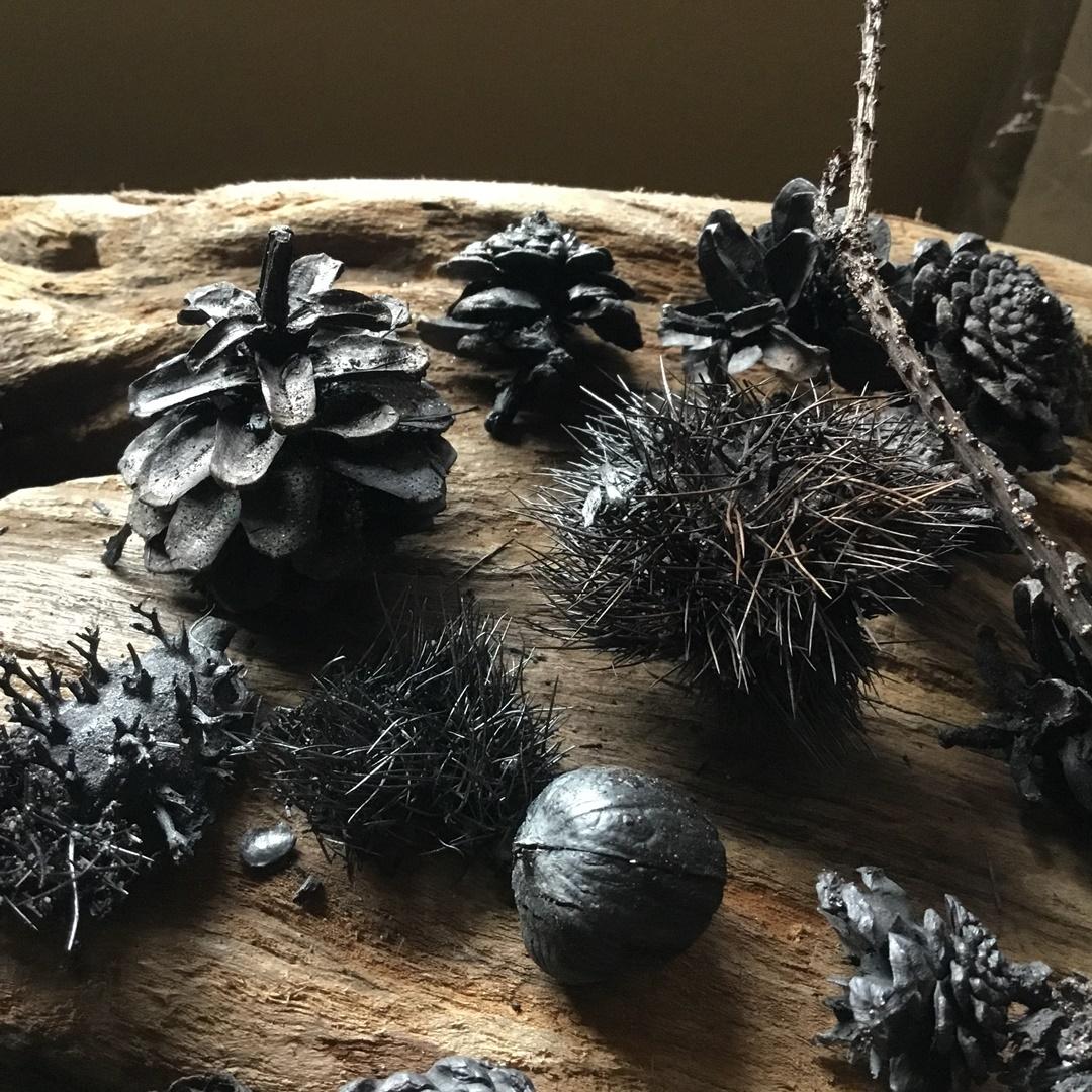花炭と流木